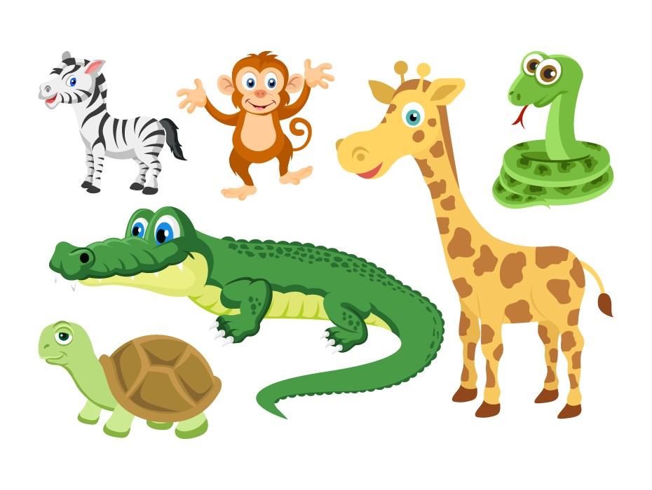 Cute Animals Illustrations