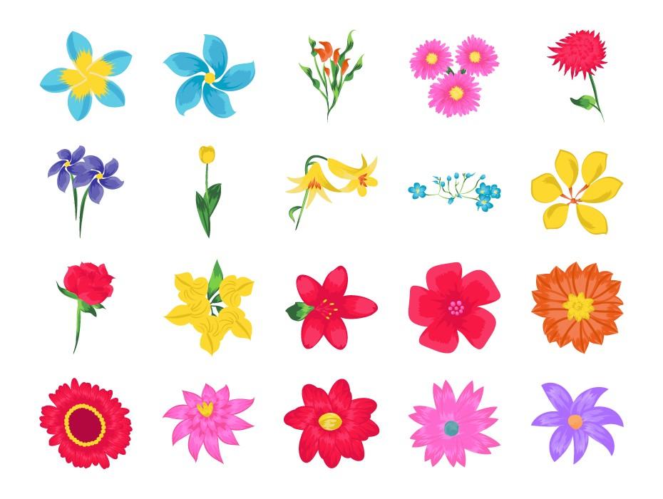 Flowers Flat Vector