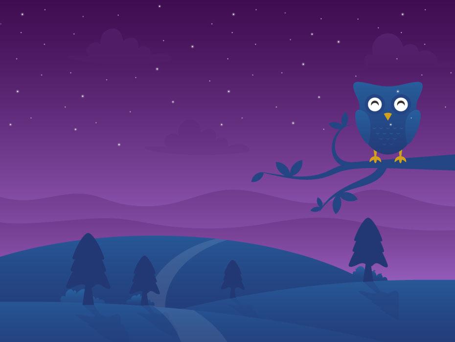 Desert Night Illustration