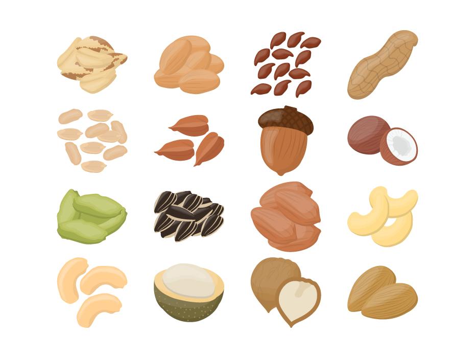 Nuts Icon Vector