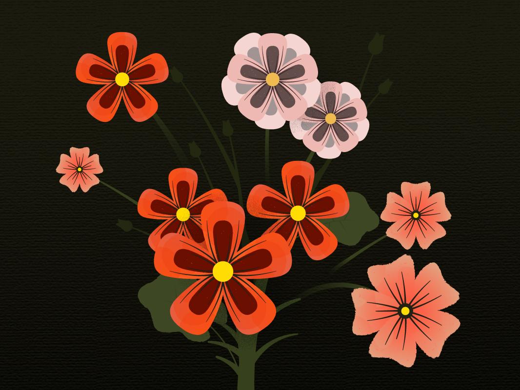 Blooming Flowers Illustration