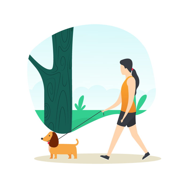 Pet Walk Illustration