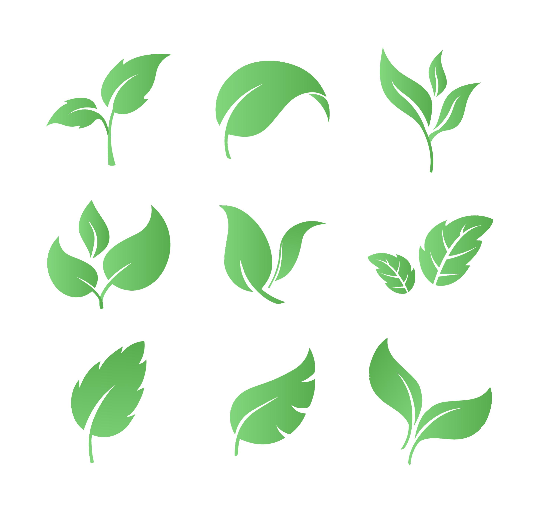 Set of Leaves Download