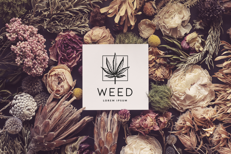 Cannabis Free Vector Logo Template