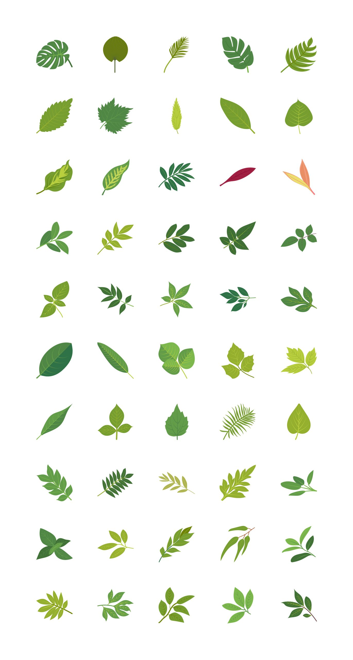 Tropical Leaves Vector Download