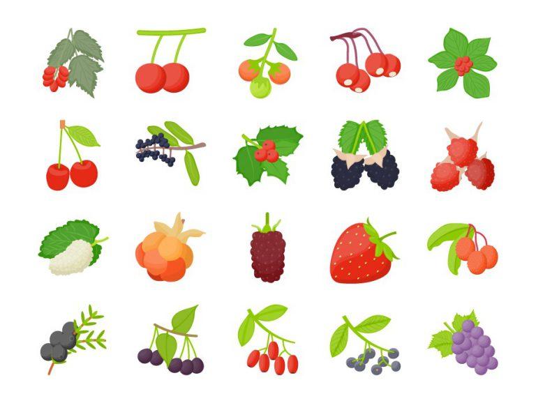 Berry Icons