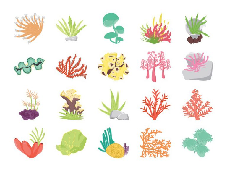 Coral Reef Flat Icons