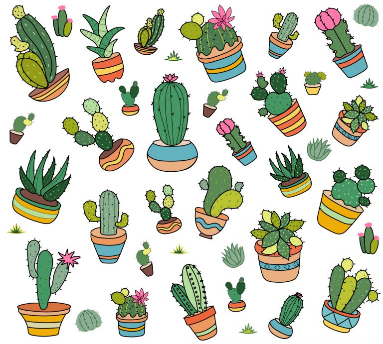 Cactus Plants Free Download