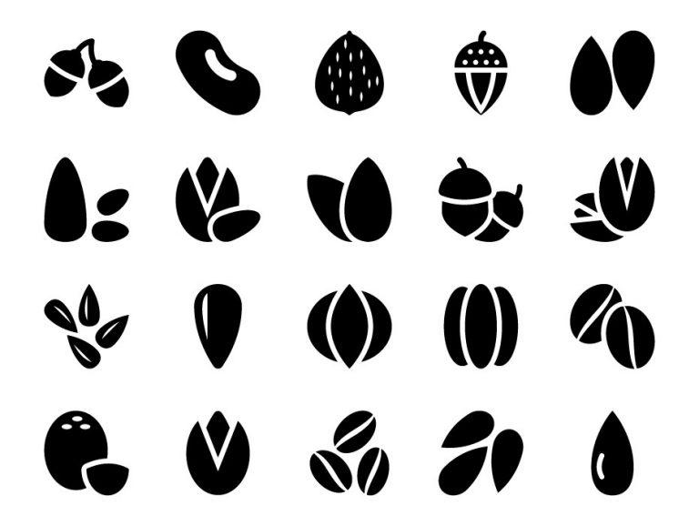Nuts Icon