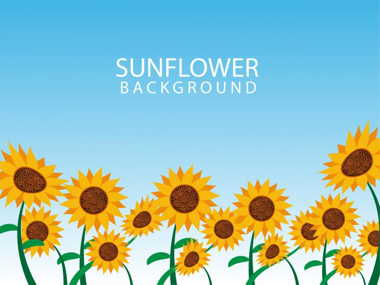 Sunflower Vector Background